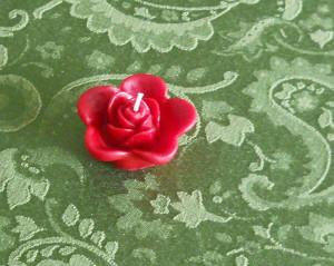red_rose_closup